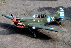 VQ Model - Curtiss P-40 Warhawk EP/GP 60-90 Size ARF Kit image